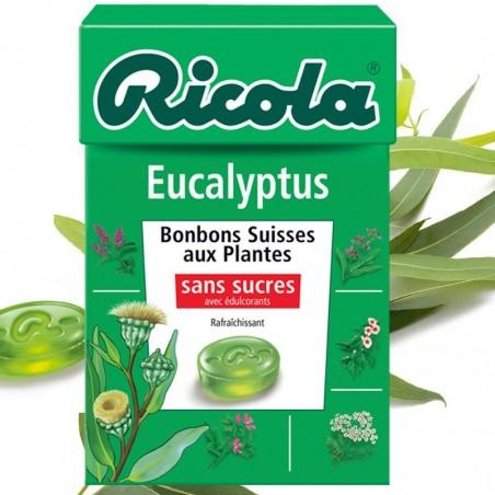 Sucette Frozen Yogurt Lollipop Fruit des bois